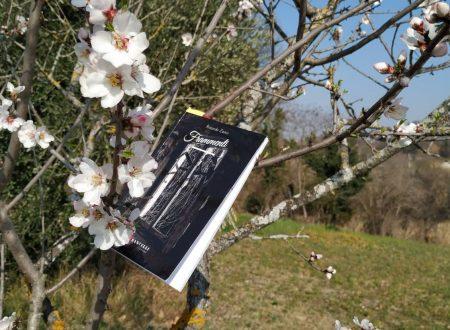 'Frammenti' di Riccardo Zanin – recensioneTLS