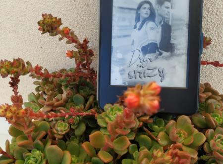 'Drive me crazy' di Lara Coraglia – segnalazione